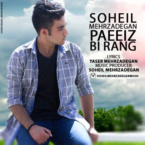 Soheil Mehrzadegan Paeiz Birang