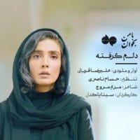 دانلود ویدیو علیرضا قربانی به نام دلم گرفته
