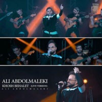 دانلود ویدیو علی عبدالمالکی خوش به حالت ( اجرای زنده )