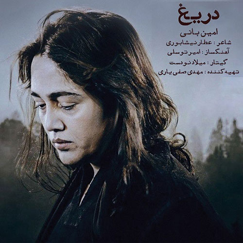 Amin Bani Darigh - دانلود آهنگ امین بانی دریغ