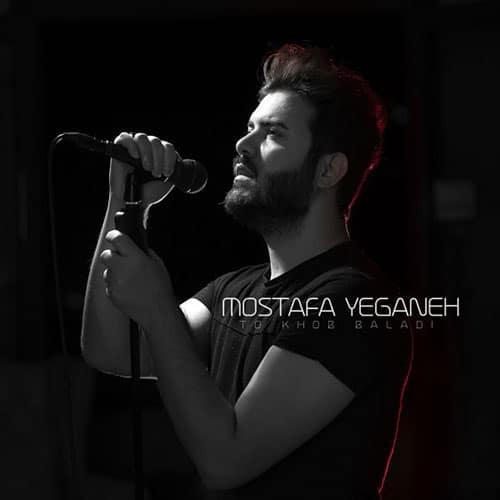 Mostafa Yeganeh To Khob Baladi 1 - دانلود آهنگ مصطفی یگانه تو خوب بلدی