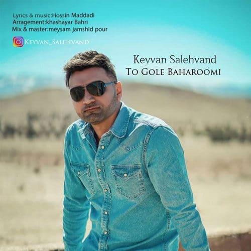 Keyvan Salehvand To Gole Baharoomi