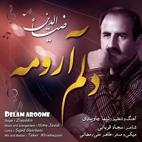 Ziaoddin Delam Aroome