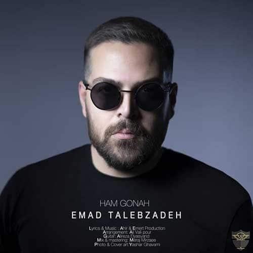 Emad Talebzadeh Hamgonah